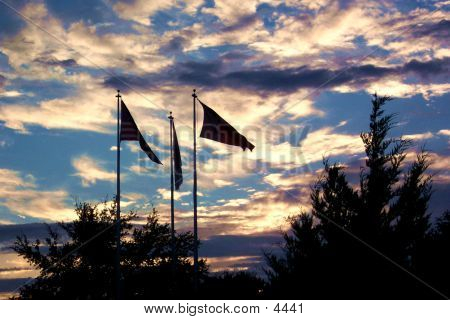 Flags In Silhouette