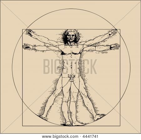 A Highly Stylized Drawing Of Vitruvian Man With Crosshatching