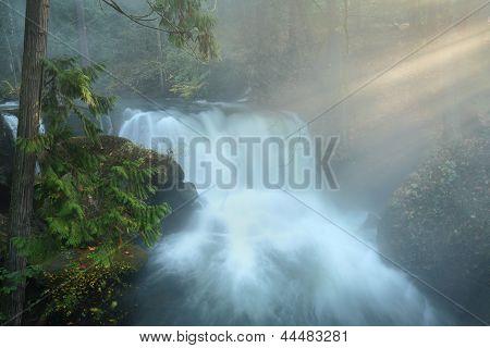 Whatcom Falls Sun Shafts, Bellingham, Washington