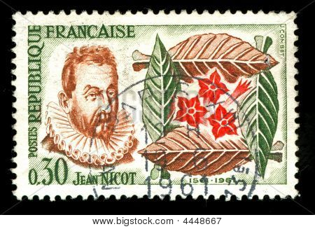 Vintage French Stamp Depicting Jean Nicot
