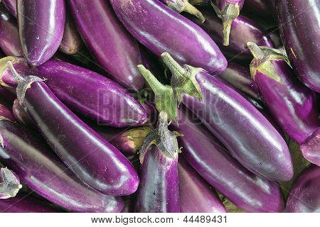 Eggplant Vegetable Background