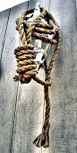 A rope noose hanging on a lantern poster