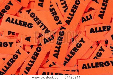 Allergy Labels