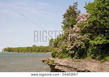 Lake Erie Overlook