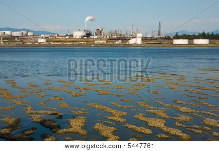Refinery At Low Tide