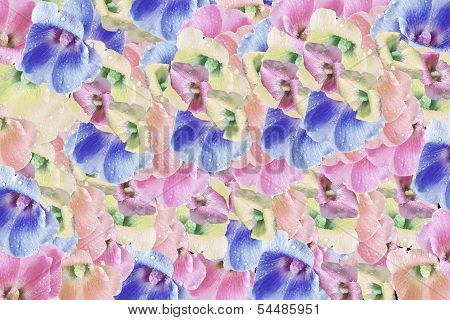 Backdrop of colorful flowers