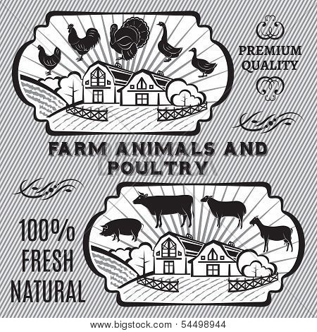 Farm Animals And Poultry