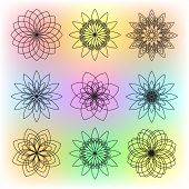 Set of Nine Contour Flowers on Colorful Background poster