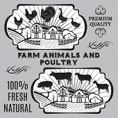 Farm animals and poultry on background with farm poster
