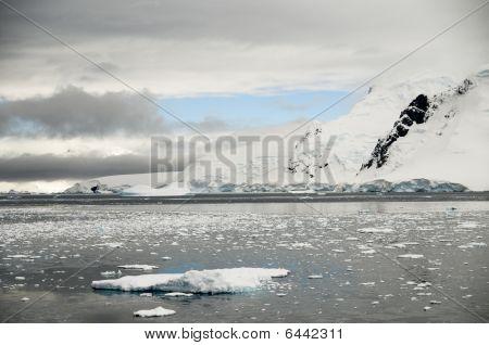 Neko Hafen Bereich Antarktis