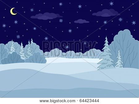 Landscape, winter forest night