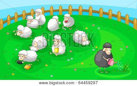 Good Black Sheep In Spoil White Sheep Herd (vector)