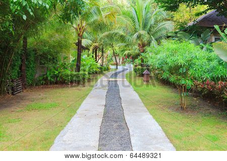 The Path In The Garden