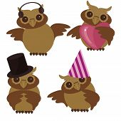 four nice owls on white background vector illustration poster