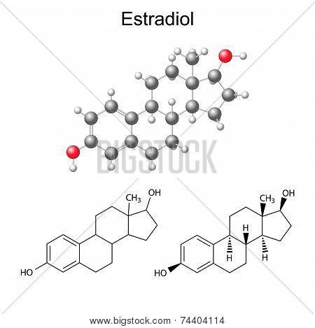 Structural Chemical Formulas And Model Of Estradiol Molecule