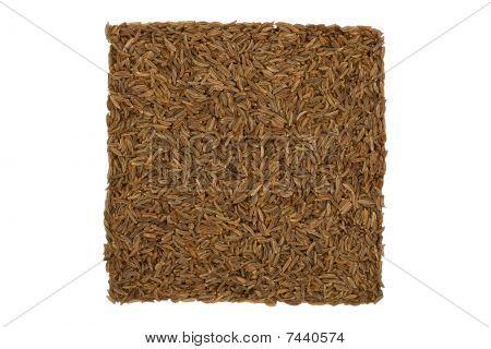 Dried Caraway