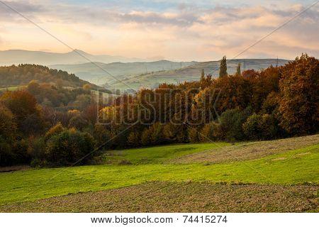 Village On Hillside Behind Forest In Mountain