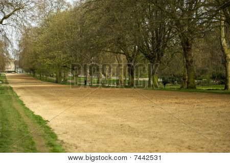 Rotten Row, Hyde Park, London