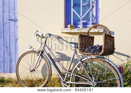Farmer House Near Lavender Fields Near Valensole In Provence, France