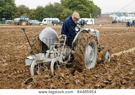 Ploughing Championship - Vintage Tractor