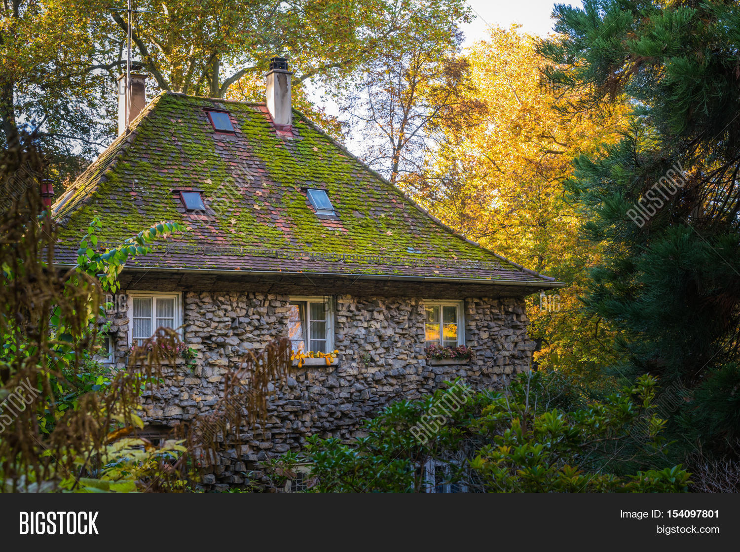 Large Old Stone House Forest Fantasy Fairy Tale German Woods Cottage Structure Green Au