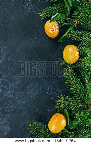 Right framework of mandarins with  evergreen twigs over spotty black surface