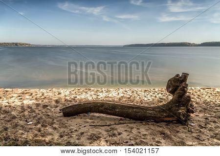 Crashed Tree Lies Near Lagoon