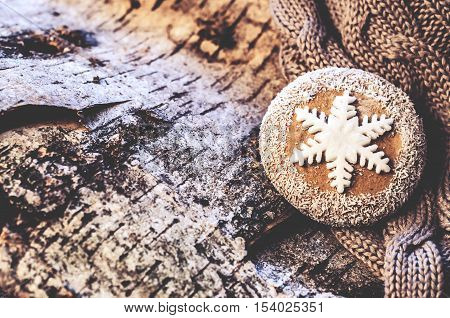 Christmas homemade cookies located on the tree bark and warm knitted sweater