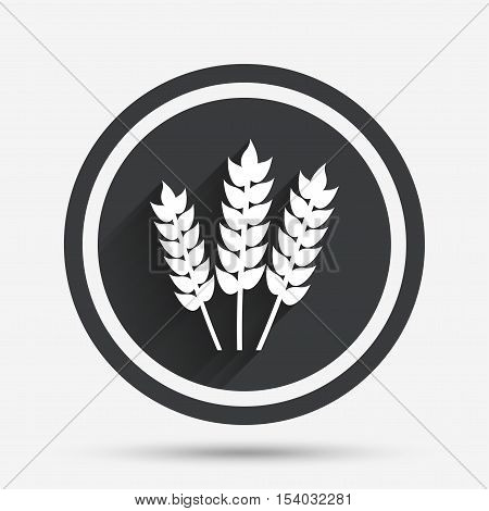 Agricultural sign icon. Gluten free or No gluten symbol. Circle flat button with shadow and border. Vector
