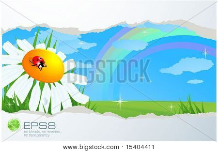 Summer vector abstract with daisy and rainbow.
