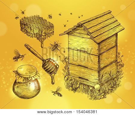 Honey, mead, beekeeping. Hand-drawn apiculture sketch vector illustration