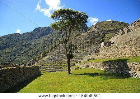 Scenic view in Macchu Picchu, Peru, South America