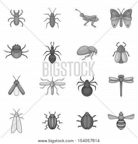 Insect icons set. Gray monochrome illustration of 16 insect vector icons for web