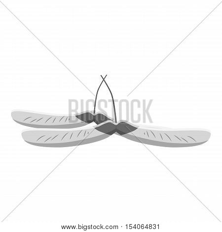 Maple seed icon. Gray monochrome illustration of maple seeds vector icon for web