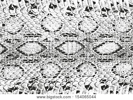 Distressed overlay texture of crocodile or snake skin leather grunge vector background.