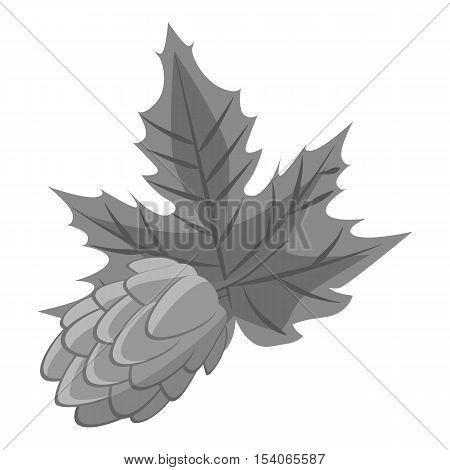 Hop cone icon. Gray monochrome illustration of hop cone vector icon for web