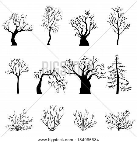 Vector Set Of Silhouettes Of Bare Trees And Bushes