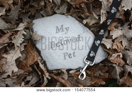 Pet Memorial Surrounded by Brown Fall Leaves