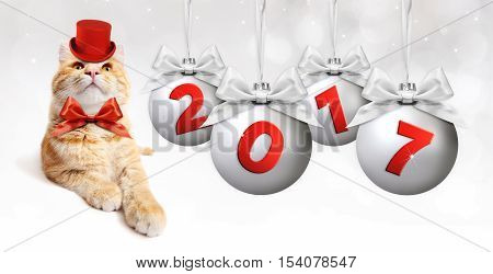 ginger cat and silver christmas ball with silvery satin ribbon bow and red 2017 text