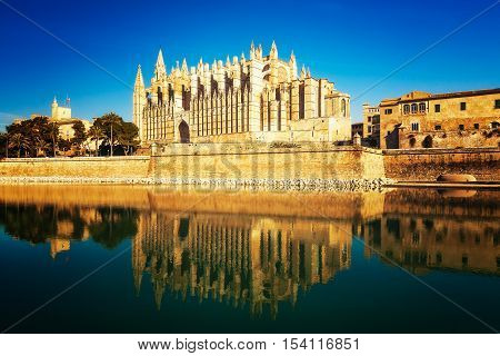 Cathedral of Palma de Mallorca with palm trees and water reflections against blue sky. La Seu gothic church at morning. Travel destinations