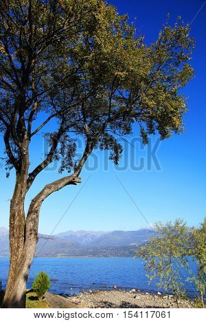 Scenic view of the Isola dei Pescatori (Fishermens Island), Lago Maggiore, Italy, Europe