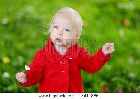 Adorable Toddler Portrait Outdoors