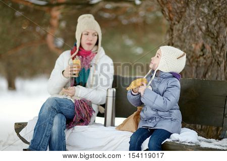 Mother and her daughter picnicking in the park at winter