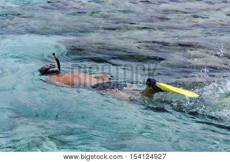 Man snorkeling in Aitutaki Lagoon Cook Islands