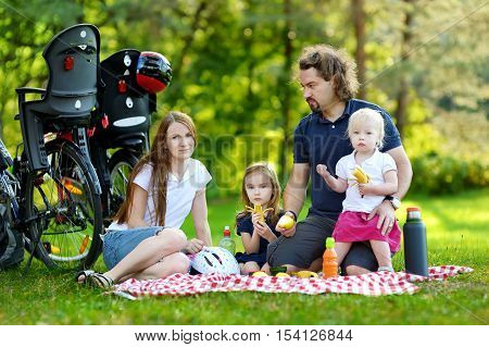 Happy family of four picnicking in the park