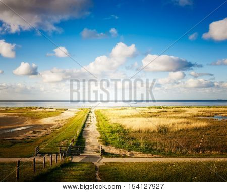 Dune landscape with path way to the beach. North sea coast with cloud sky. Nature reserve and travel destination in Germany