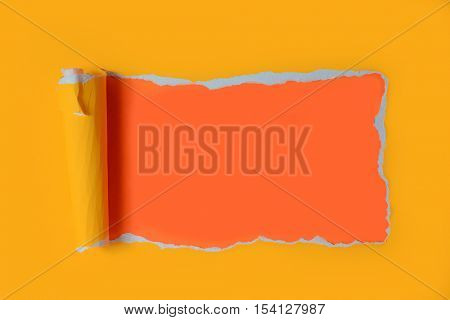 Ripped neon Paper with grungy edges as background
