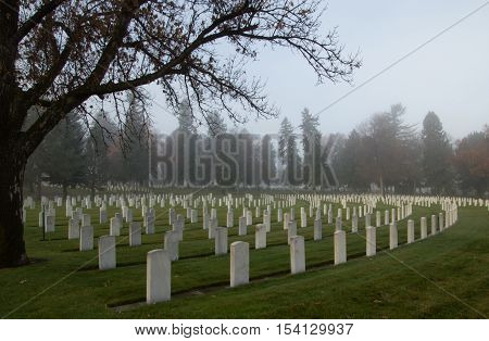 Rows of White Headstones Marking the Graves of American Veterans on a Foggy Morning