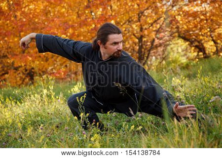 Adult man practicing Tai Chi in autumn park