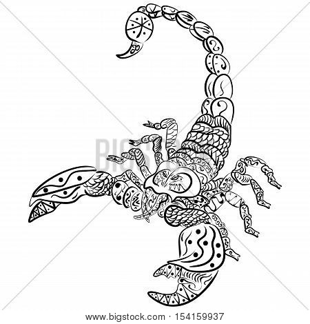 zentangle vector scorpion, Black and white zentangle art. Ethnic patterned illustration, tattoo, poster, print
